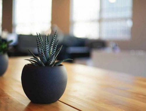 Comment désencombrer sa maison efficacement et facilement